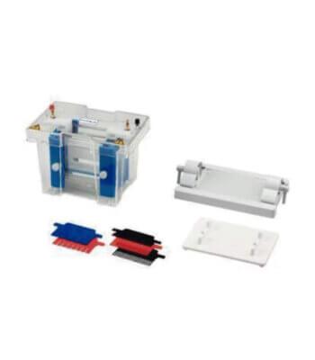 Sistema Vertical de Electroforesis