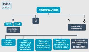 Tipos de Coronavirus