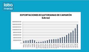 Exportaciones Ecuatorianas de Camarón en Libras