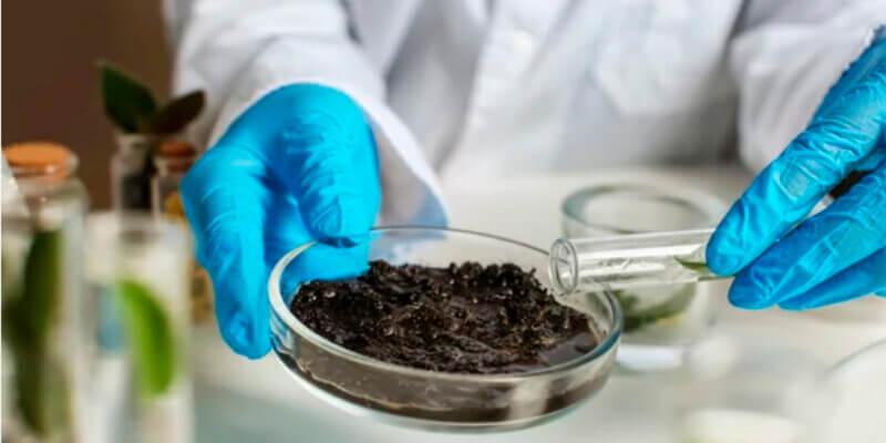 Molinos- molienda de alimentos analisis
